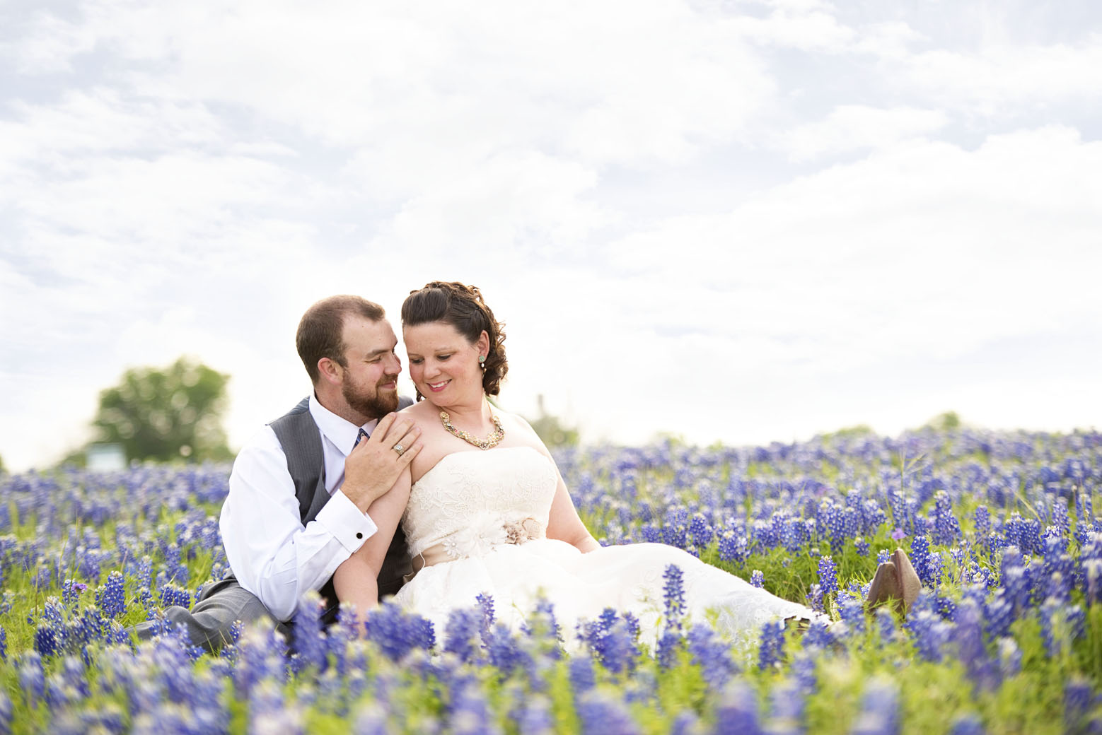 bluebonnet wedding austin
