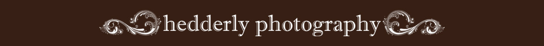 Hedderly Photography Blog logo